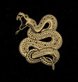 viper snake on dark background design element for vector image