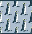 walking king penguin seamless pattern vector image