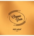 grain organic vintage design background vector image