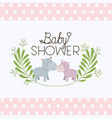 baby shower card with cute hippos couple vector image vector image