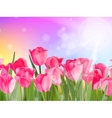 Beautiful spring flowers EPS 10 vector image vector image
