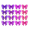 realistic purple and pink bows with golden border vector image vector image