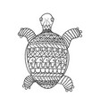 stylized turtle isolated on white background vector image