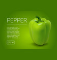 photo-realistic fresh pepper on a vector image