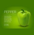 photo-realistic fresh pepper vector image