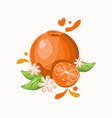 orange delicious fruit on black white vector image