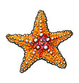 hand drawn starfish underwater living organism vector image vector image
