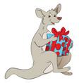 kangaroo holding a giftbox vector image vector image