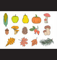 set autumn items vector image