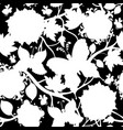 white and black floral pattern vector image vector image
