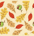 autumn leaves and horse chestnut vector image vector image