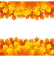 Autumn maple leaf on a white background vector image vector image