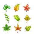 cartoon colorful leaves set vector image vector image