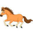 cartoon horse running isolated on white background vector image vector image
