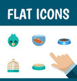 flat icon pets set of feeding sparrow cat eatin vector image vector image