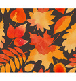 seamless pattern with hand drawn autumn leaves vector image