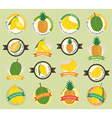 Set of various fresh fruit premium quality tag vector image vector image
