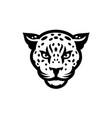 tiger head - logo concept vector image