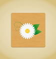 wooden plate chamomile vector image vector image