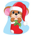 cute mouse in christmas sock with snow and vector image vector image