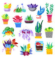 plants in flowerpots potted colorful vector image vector image