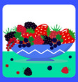 different berries in a blue plate vector image
