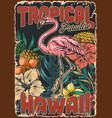 hawaiian tropical colorful vintage poster vector image