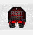 mma gloves hands octagon stage cage poster mixed vector image