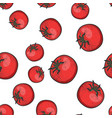 red tomato seamless pattern sketch vector image vector image