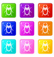 scarab beetle set 9 vector image vector image