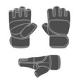 set with image sports training gloves vector image vector image