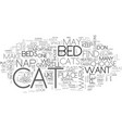 where does your cat nap make him as comfortable vector image vector image