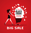 Black friday big sale vector image