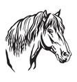 decorative portrait of horse 9 vector image vector image