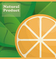 orange natural product poster design vector image