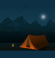 camping forest night illsutration landscape vector image vector image