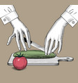 female hands with a knife and vegetables vector image