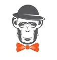 monkey gentleman in Hat vector image vector image