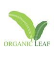 organic natural green leaf logo vector image vector image