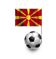 Soccer Balls or Footballs with flag of Macedonia vector image vector image