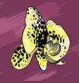 elegant yellow orchid flower concept vector image vector image