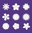 flowers paper cut background set floral vector image vector image