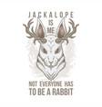 jackalope head vector image