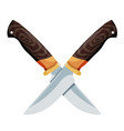 color image two crossed knives on a white vector image vector image