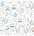 floral seamless pattern with meadow plants vector image vector image