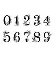 flower ornate numbers elegant blossom number vector image vector image