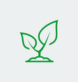 plant growing icon in thin line style vector image