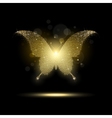 Shiny Golden Butterfly vector image vector image