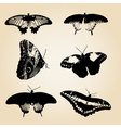 six types of black butterfly eps10 vector image vector image