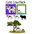 a pack of cute cow vector image vector image